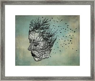 Bird Lady Framed Print by Diana Boyd