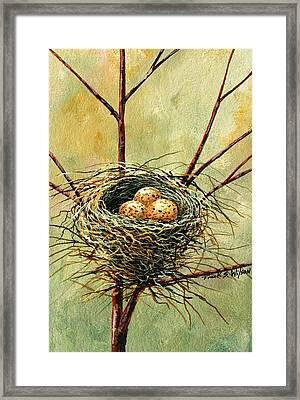 Bird Nest Framed Print
