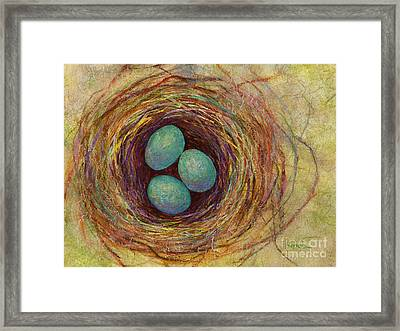 Bird Nest Framed Print by Hailey E Herrera