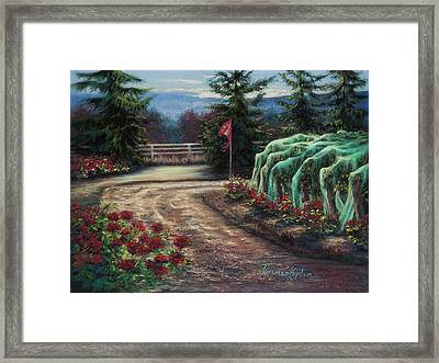 Bird Nets And Rhone Vines Framed Print