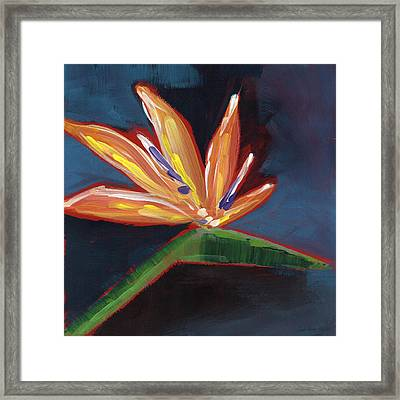 Bird Of Paradise- Art By Linda Woods Framed Print by Linda Woods