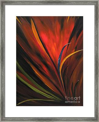 Bird Of Paradise Framed Print by Carol Sweetwood