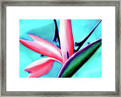 Bird Of Paradise Flower #290 Framed Print by Donald k Hall