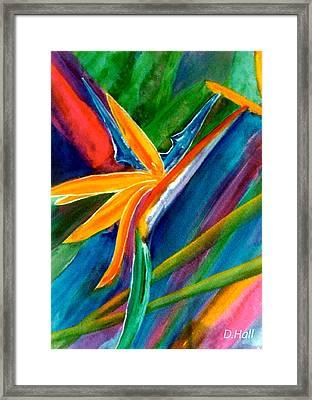 Bird Of Paradise Flower #66 Framed Print by Donald k Hall