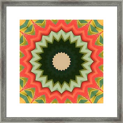 Framed Print featuring the photograph Bird Of Paradise Kaleidoscope by Bill Barber