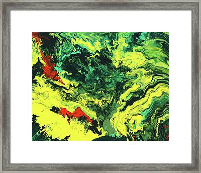 Bird Of Paradise Framed Print by Ralph White