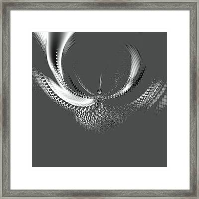 Bird Of Paradise Framed Print by Thomas Smith
