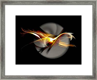 Bird Of Passage Framed Print by Aniko Hencz