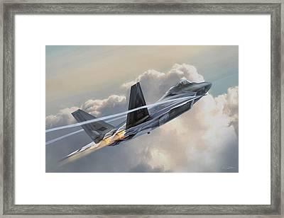 Bird Of Prey Framed Print