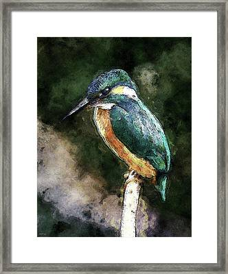 Bird On A Branch Framed Print by Phil Perkins