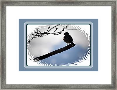 Bird On A Branch Framed Print by Russ Mullen
