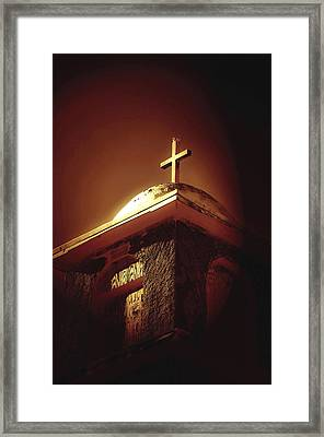 Bird On A Steeple Framed Print