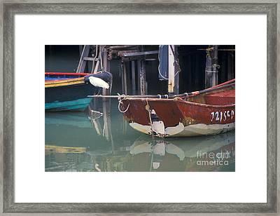 Bird On Boat Oar - Hong Kong Framed Print