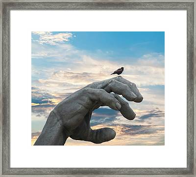 Bird On Hand Framed Print