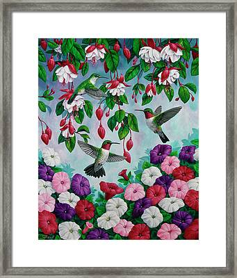 Bird Painting - Hummingbird Heaven Framed Print by Crista Forest
