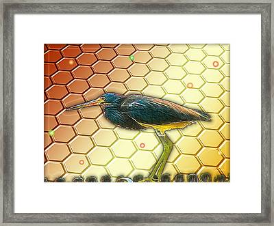 Bird Ponders The Disappearing Bees And Several Biological Markers Left In The Hive Framed Print by Wendy J St Christopher