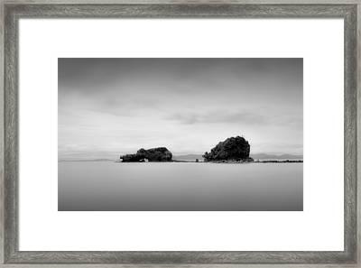 Bird Rock Framed Print by Mihai Florea