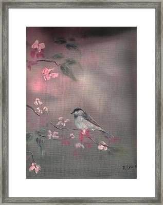 Bird Study Framed Print by Raymond Doward
