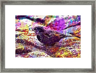 Framed Print featuring the digital art Bird The Sparrow Nature Pen  by PixBreak Art