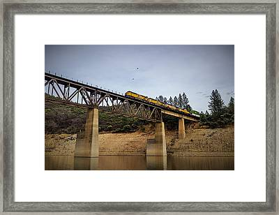 Bird Vs Train Framed Print