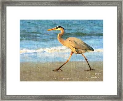 Bird With A Purpose Framed Print
