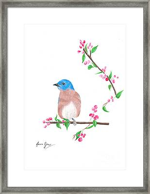 Minimal Bird And Cherry Flowers Framed Print