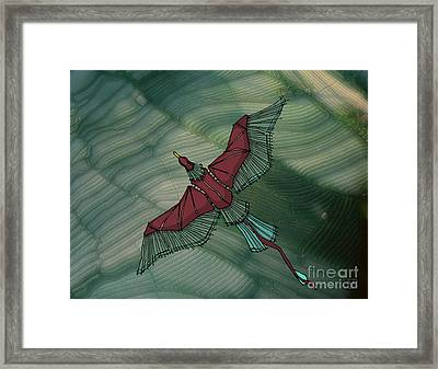 birdEYE volcano III Framed Print
