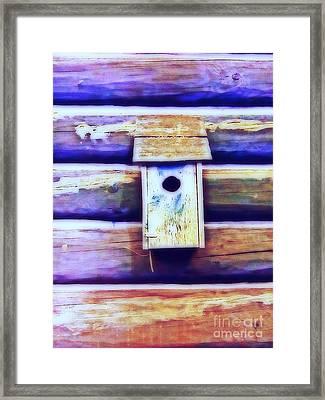 Birdhouse Blues Framed Print