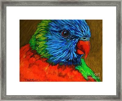 Birdie Birdie Framed Print