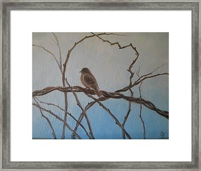 Birdie Framed Print by Oksana Zotkina