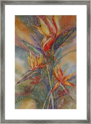 Birdies Framed Print by Tara Moorman