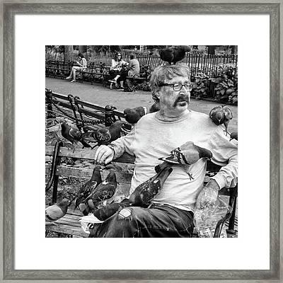 Birdman Of Wsp Framed Print
