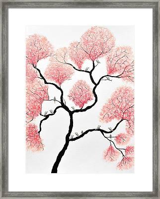 Birds And Flowers Framed Print by Sumit Mehndiratta