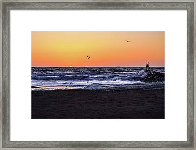Birds At Sunrise Framed Print