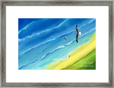 Bird's-eye Above Sea Framed Print