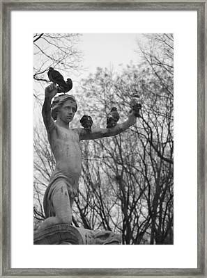 Birds Eye View- Central Park Framed Print by Tara Miller