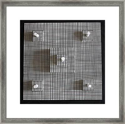 Bird's Eye View Framed Print by Frank Parrish