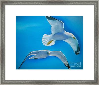Birds Eye View Framed Print by Lacey Wingard
