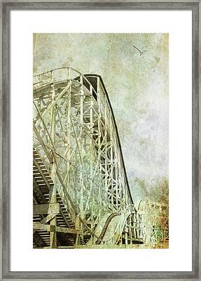 Bird's Eye View Framed Print by Margaret Hormann Bfa