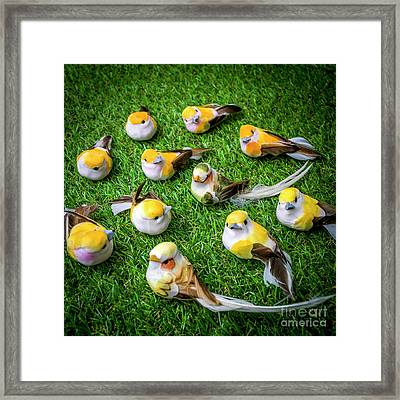 Birds Figurine Framed Print by Bernard Jaubert