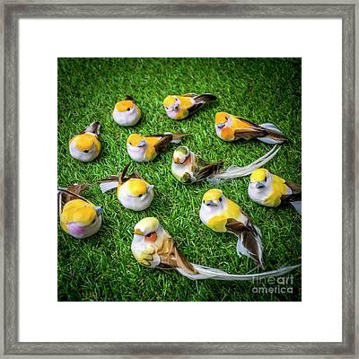 Birds Figurine Framed Print
