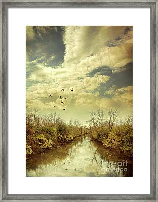 Framed Print featuring the photograph Birds Flying Over A River by Jill Battaglia