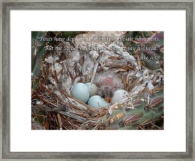 Birds Have Nests Framed Print by Mary Lee Dereske