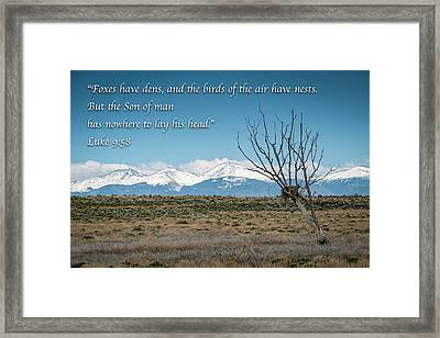 Birds Have Nests - Mountain Scene Framed Print by Mary Lee Dereske