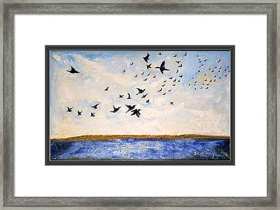 Birds In Flight At Pushkar Framed Print by Anand Swaroop Manchiraju