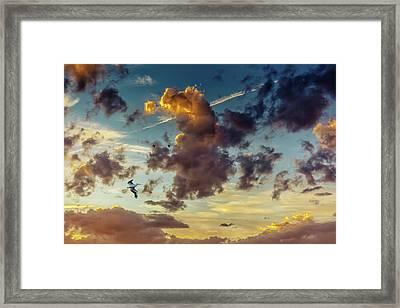 Birds In Flight At Sunset Framed Print