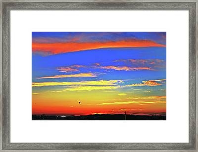 Birds In Nantucket Sunset From Eat Fire Spring Framed Print by Duncan Pearson