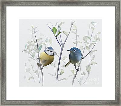 Birds In Tree Framed Print