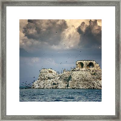 Birds Island Framed Print