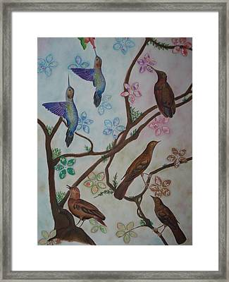 Birds Framed Print by Latha  Vasudevan